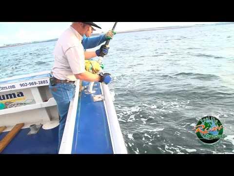 Blue Fin Tuna FTR Adventures