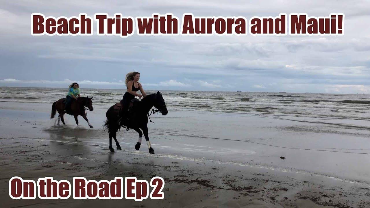 Aurora and Maui on the Beach! Summer Horsemanship Travels Ep 2