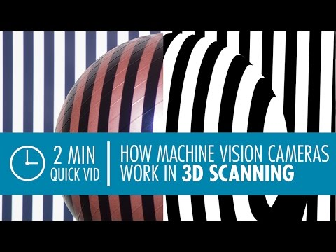 Structured Light 3D Scanning with Machine Vision Cameras