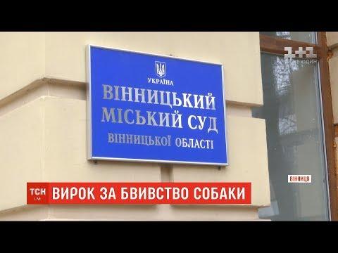 До 5 років за ґратами засудили молодика, який вбив песика у Вінниці