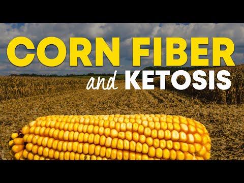 corn-fiber---how-food-companies-overstuff-fiber-into-keto-products