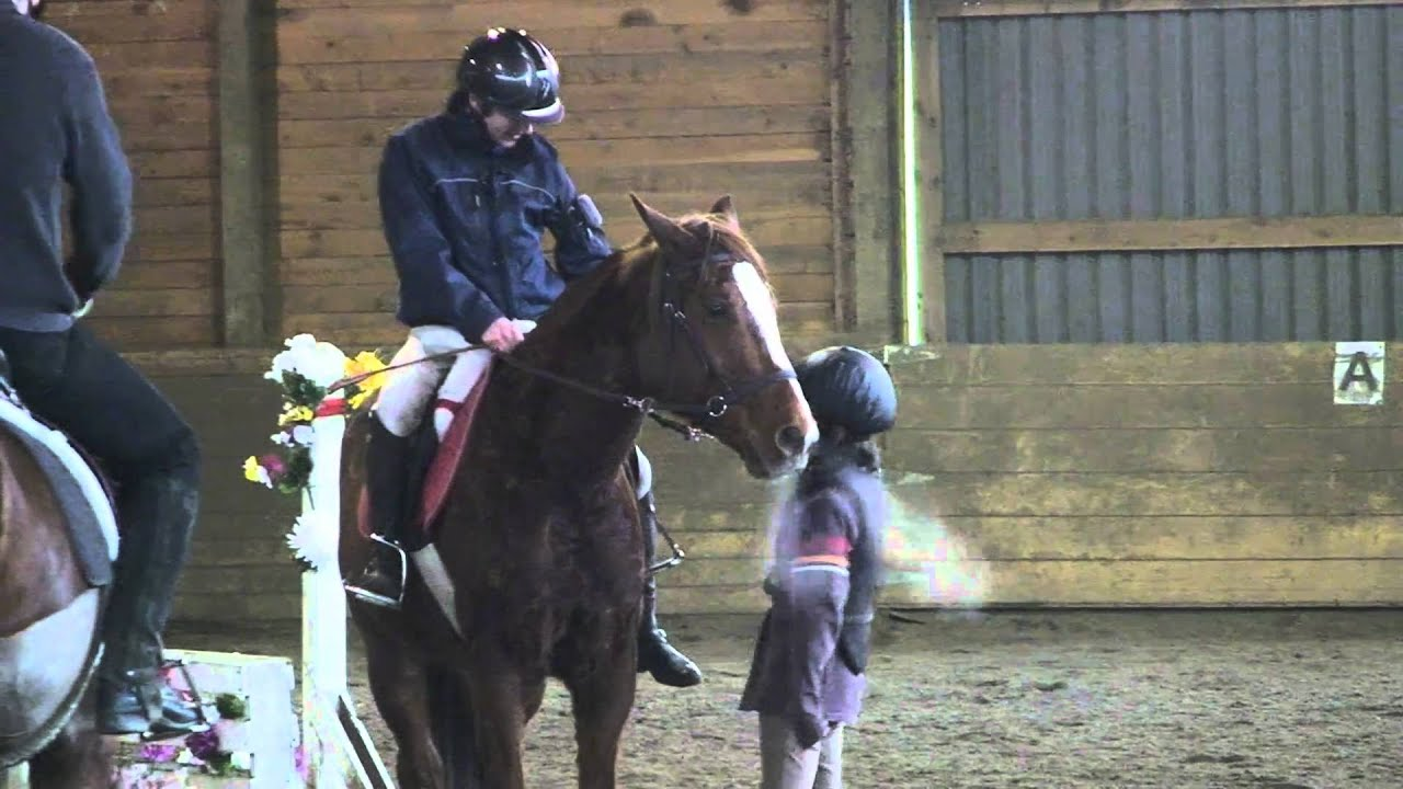 Download Lesson with Brian  and Ren Bennett walk trot canter X poles