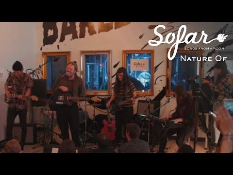 Nature Of - Bottom Line | Sofar Edmonton