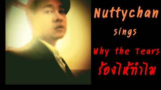 Nuttychan - Why The Tears (Thai Cover Version)
