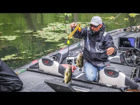 How To Catch Bass In Rivers - Current Fishing Secrets