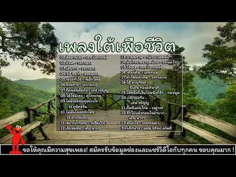เพลง เพื่อ ชีวิต ฮิต ติด ชา ร์ ต 20 อันดับ