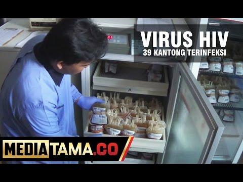 PMI Tegal Temukan 39 Kantong Darah Terinfeksi HIV