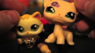 New LPS From Ebay #13 and COOL ACCESSORIES Necklaces bows custom rare kitten