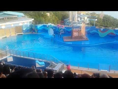 Ocean Park Show! Hong Kong !