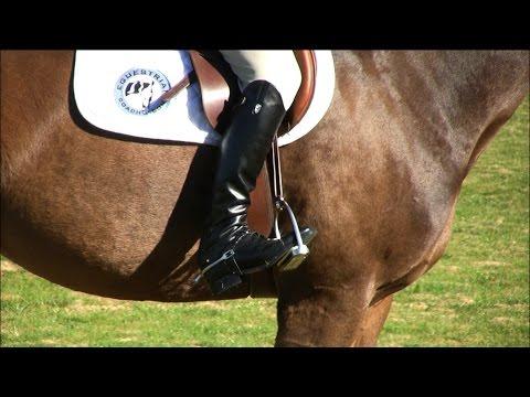Equitation Tips - Legs