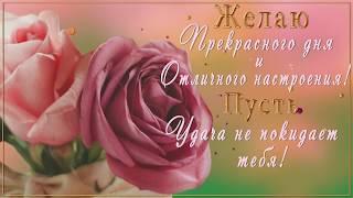 💗🌞Желаю прекрасного дня и отличного настроения! Пусть удача не покидает тебя! 💗🌞