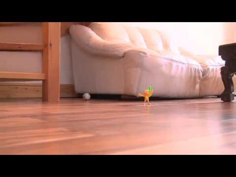 Engineered Hardwood Flooring Woodfloors4u Youtube