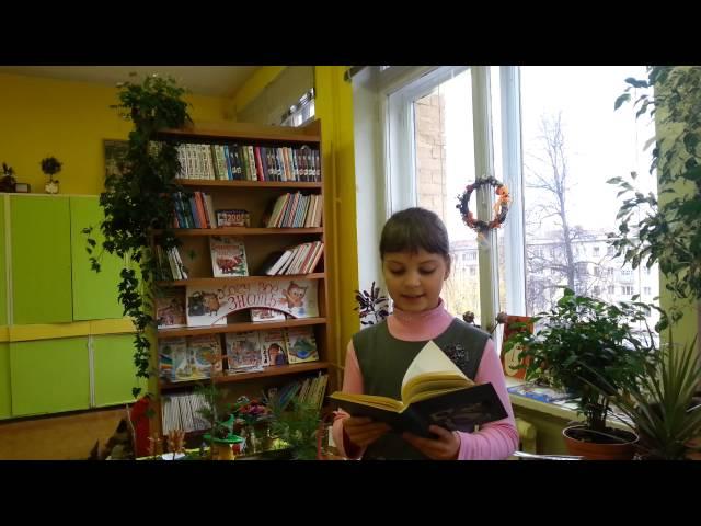 Изображение предпросмотра прочтения – ТатьянаВласова читает произведение «Летняя гроза» В.Я.Брюсова