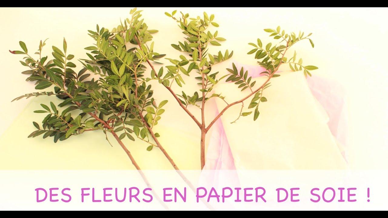 des fleurs en papier de soie jardinerie truffaut tv youtube. Black Bedroom Furniture Sets. Home Design Ideas