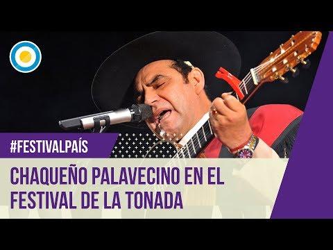 Festival de la Tonada 2014 - Chaqueño Palavecino - 1º Noche (5 de 5)