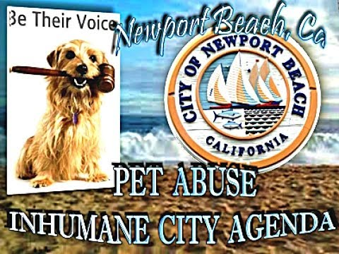 NEWPORT BEACH EVIDENCE PUPPY MILL CRUELTY- FEDERAL VIOLATING FASHION ISLAND RUSSO'S PETS PUPPIES