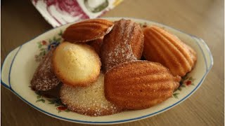 Classic French Madeleines Recipe - Episode 487 - Baking with Eda