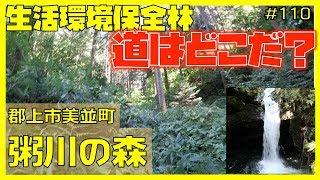 【森林浴】#110 郡上市美並町 粥川の森