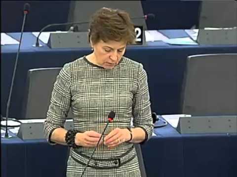 Anneli Jäätteenmäki on EU-Iraq partnership and cooperation agreement