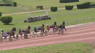 Vidéo de la course PMU PRIX DE MARIENDORF