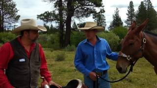 MAX BISHOP INTERVIEWS TWO TIME MULE RIDING WORLD CHAMPION AND TWO TIME WORLD CHAMPION MULE MICHAEL M