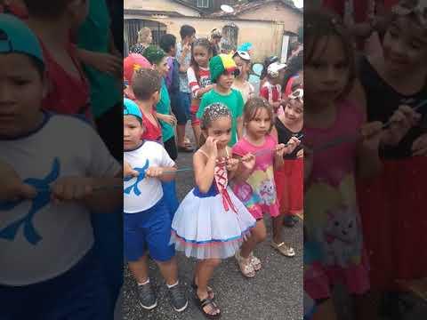 Festinha De Carnaval Da Escola Educarte 2020