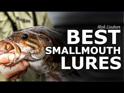Top 5 Summer Smallmouth Bass Lures 🔨