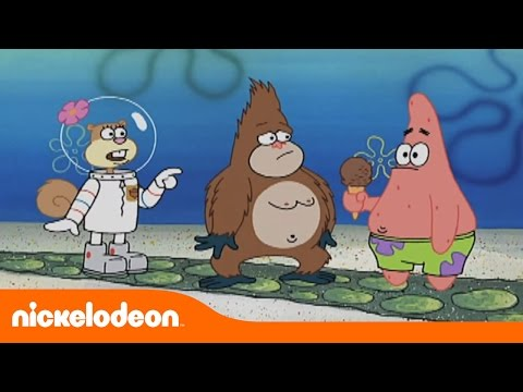 Bob Esponja | Gorila Suelto | Nickelodeon en Español from YouTube · Duration:  1 minutes 59 seconds