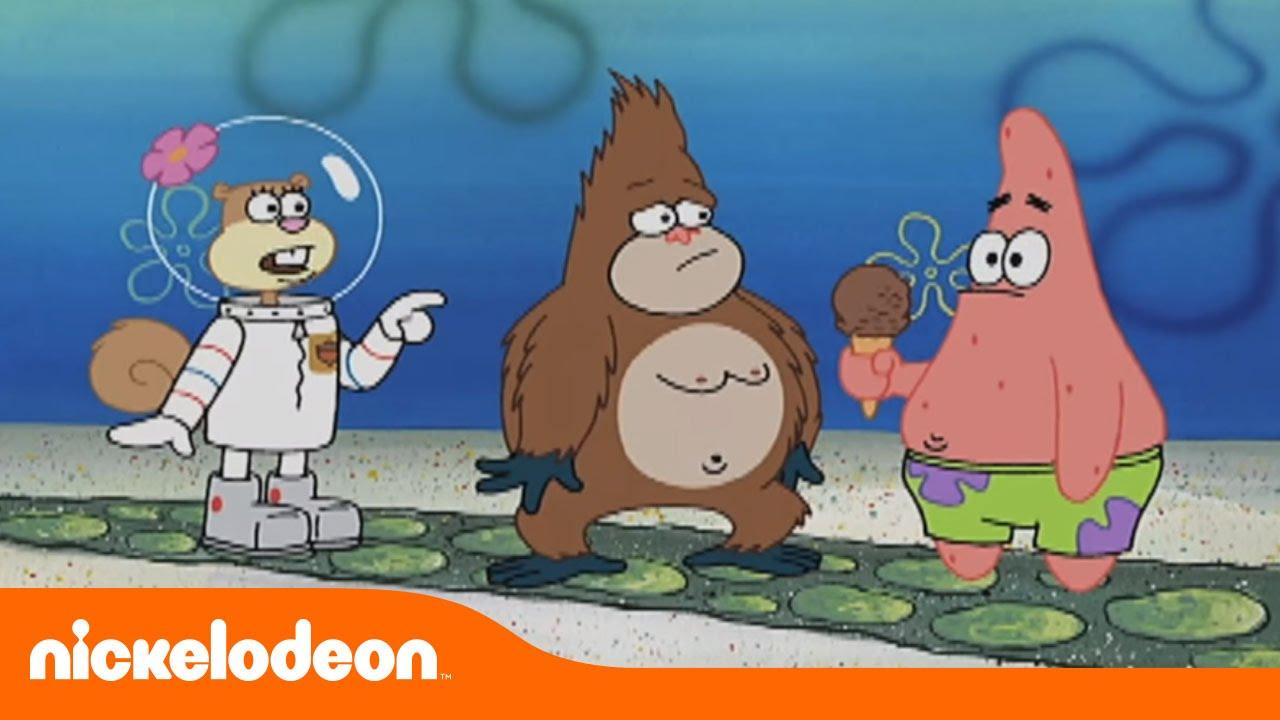 Suelto EsponjaGorila Nickelodeon En Bob Español OikZPuX