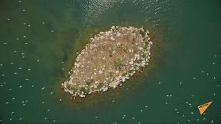 Что же происходит на Севане – кадры озера с дрона