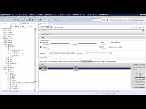 SAP HANA Academy - Modeling: SQL Analytic Privileges [SPS 10]