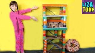 Потрясающий ДОМ из Картона стал ВЫШЕ Лиза строит Игровой домик для питомцев LizaTube