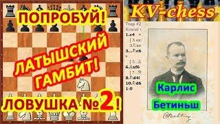 Латышский гамбит Ловушки в шахматах 2 в дебюте Видео для начинающих