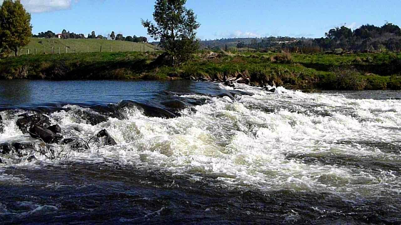 """Résultat de recherche d'images pour """"trout river north esk tasmania"""""""