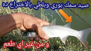 شاهد صيد سمك بوري وسمك بلطي بستخدام الاختراع الجديد للصيد السهل من غير اي طعم .