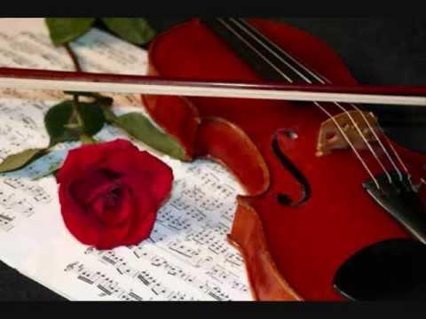 All Region XXV 2010- Bach Orchestra- Blue Ridge Run