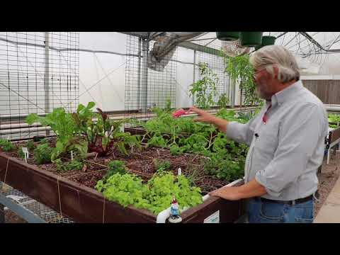 Meeting Dr. James Ebeling – aquaponics in Arizona – HWT #25