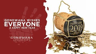 Happy New Year - From The Gondwana Family To Yours