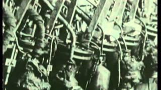 Gladiatory Vtoroj mirovoj vojny vob