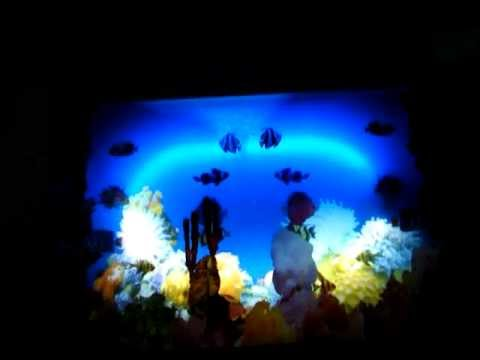 VIRTUAL FISH TANK LIGHTED MIRROR PICTURE