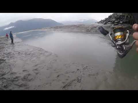 Silver salmon fishing Alaska 2017