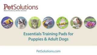Petsolutions: Essentials Training Pads For Puppies & Adult Dogs