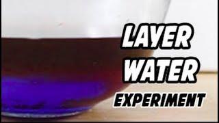 Water Layer Experiment #scienceexperiment #shorts #backtobasics