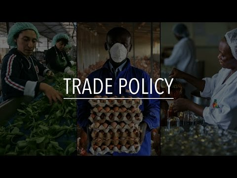 FAO Policy Series: Trade policy