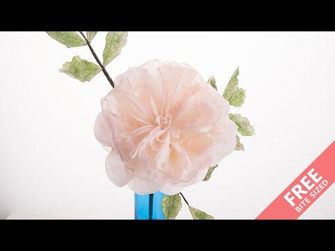 David Austin Rose Sugar Flower   Bite Sized