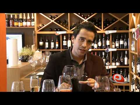 Videoaula   Degustação de Vinhos 3