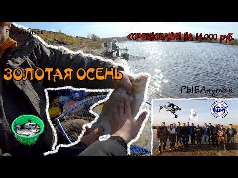 """Соревнования """"Золотая осень"""" 2019 . Рыбалка Тюмень."""