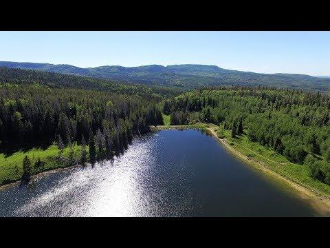 Day 37 -  Chapman Reservoir CG, Routt NF (4K)