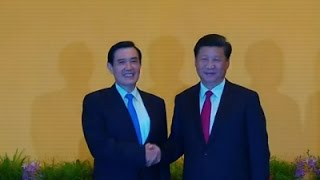 Raw: After decades, China and Taiwan Shake Hands