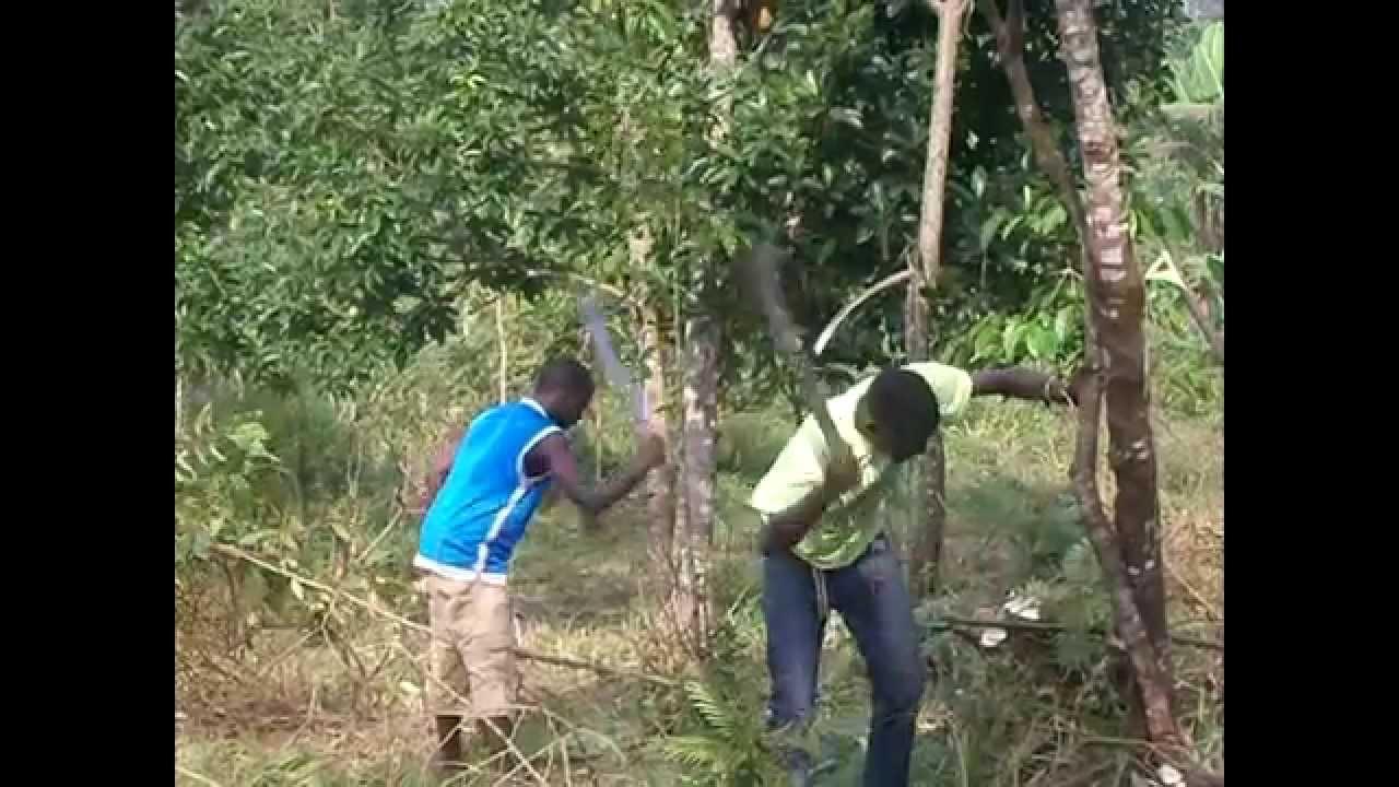Ebenezer Kisoboka children's home 2012 - 2014 - YouTube